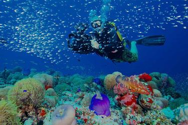 Scufundari in  Maldive