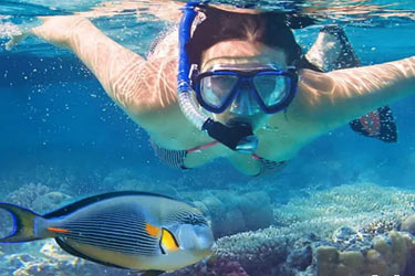 Snorkeling in Maldive