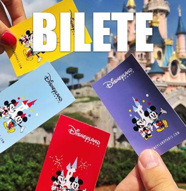 Bilete Intrare Disneyland Paris
