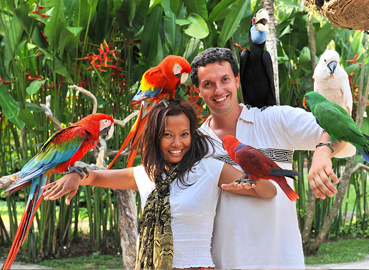 Gradina zoologica din Bali