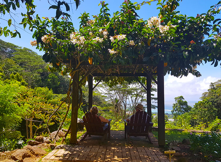 Jardin Du Roi Spice Garden