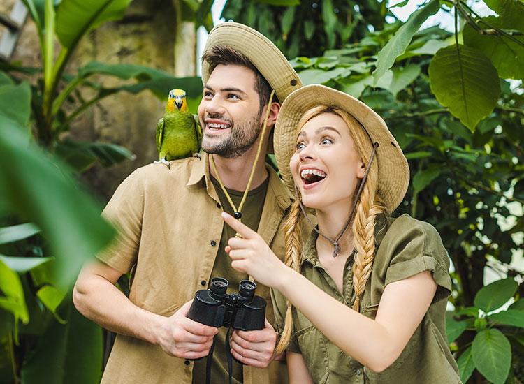 Descoperiti speciile endemice de pasari.