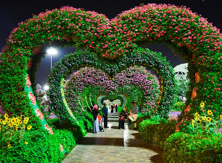 The Miracle Garden
